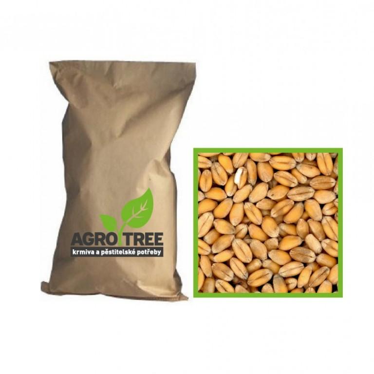 Pšenice 25 kg